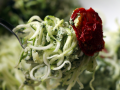 Courgette / Zuchini Noodles with Spinach & Cashew