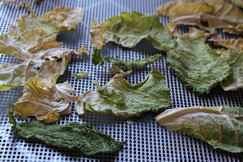 cabbage-crisps